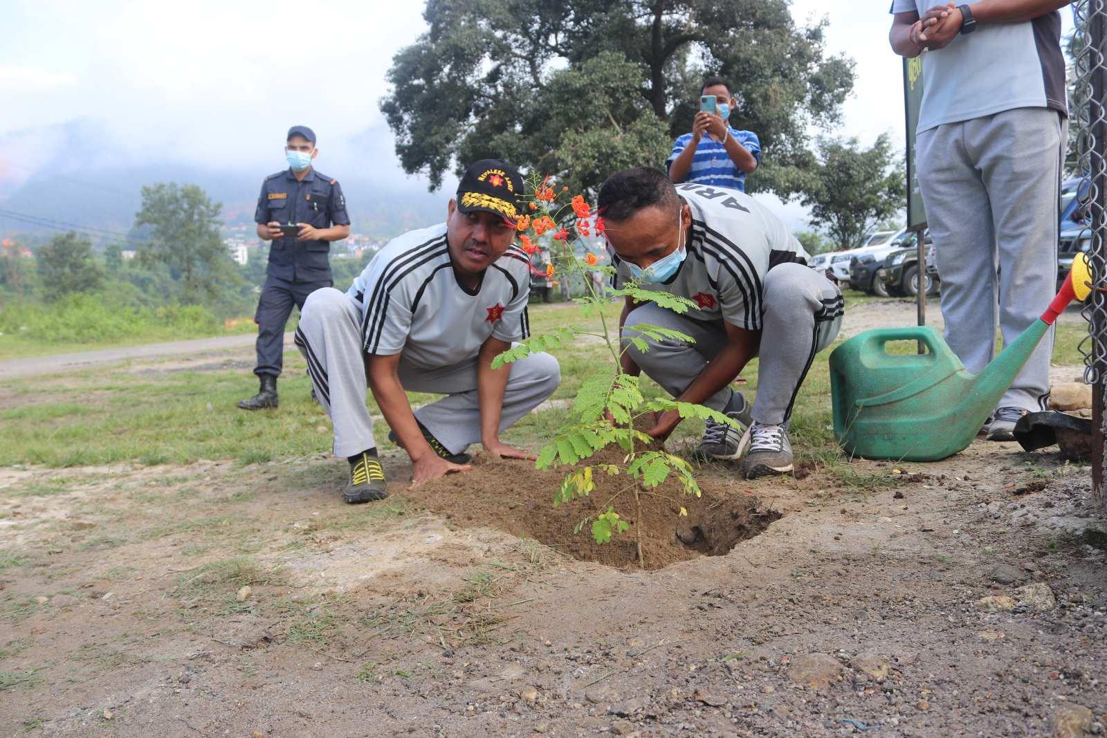संबिधान दिवसको अवसरमा नुवाकोटमाा नेपाली सेनाबाट बृहत्त वृक्षारोपण